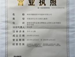 邵阳祁鑫通程营业执照